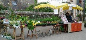 Marché fleurs Quimper 5 octobre 2014